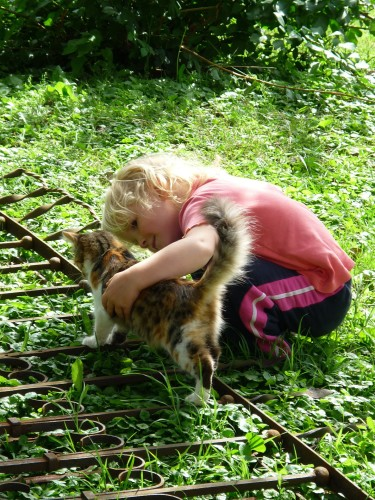 Animais de estimação são benéficos para a saúde