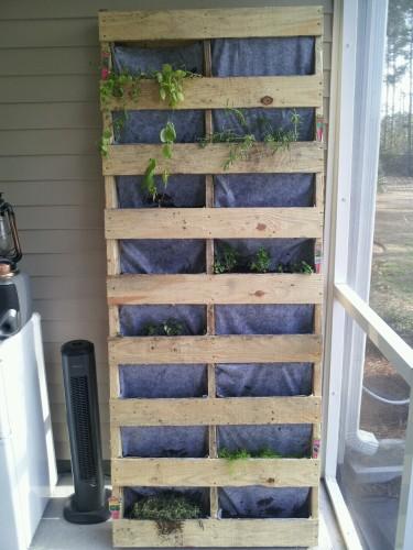 Encha o palete com o substrato para plantas
